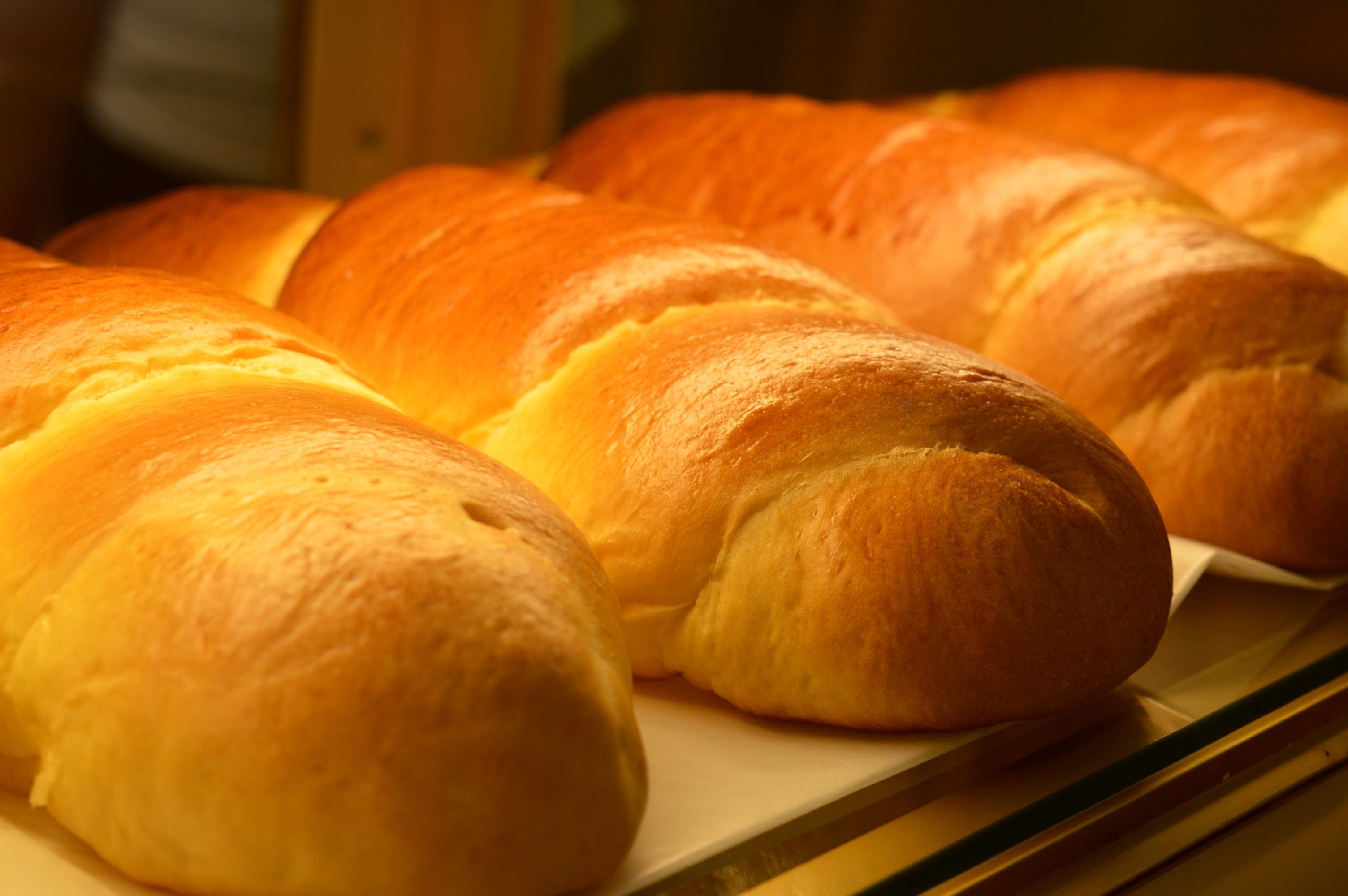 pão de liquidificador vovó palmirinha
